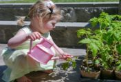 8 Tips To Get Your Kids Enjoy Home Gardening