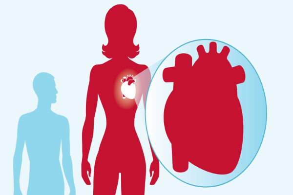 Cardiovascular Disease and Women